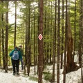 Snowshoe-specific trails are not for skiers.- Sea-to-Sky Gondola Summit