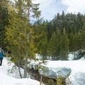 The trails lead through alpine plateaus and creeks.- Sea-to-Sky Gondola Summit