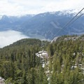 Take the gondola down or walk the Shannon Falls Trail.- Sea-to-Sky Gondola Summit