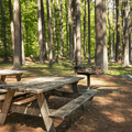 Picnic tables on the west side of the lake.- Schreeder Pond