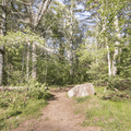 The path to the Levy from Southeast Park.- Mansfield Hollow State Park
