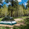 Camping at North Rim Campground.- North Rim Campground