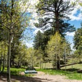 Secluded tent site at North Rim Campground.- North Rim Campground