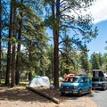More sites at North Rim Campground.- North Rim Campground