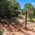 Cape Final Trail.- Cape Final Trail