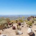 A nice little cactus garden near the parking lot.- Dobbin's Lookout