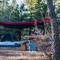 Hammock trees everywhere!- Ten-X Campground