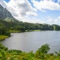 The lake and surrounding mountains.- Ho'omaluhia Botanical Gardens