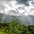 The majestic Ko'olau Mountains are an awe-inspiring sight!- Ho'omaluhia Botanical Gardens