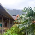 Stop by the visitor center to see a few small exhibits or borrow a bamboo fishing pole.- Ho'omaluhia Botanical Gardens