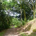 There is a short flat walk from the parking areas to the camp sites.- Ho'omaluhia Botanical Gardens