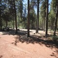A campsite at Reservoir Campground.- Reservoir Campground