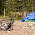 Typical campsite at Jenny Lake.- Jenny Lake Campground