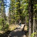 The trail to Liegh Lake.- Leigh Lake Trail