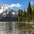 Mount Moran.- Leigh Lake Trail