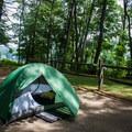 Campsite 14.- Wilgus State Park