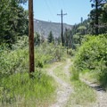 Much of the Truckee River canyon has been home to past town sites and commercial ventures, though not much remains of these today.- Tahoe-Pyramid Bikeway: Farad to Floriston