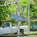 Clarissa Falls Resort in Belize.- Mopan River Float