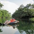 Relaxing on the Mopan River in Belize.- Mopan River Float