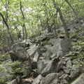 The ascent becomes very rocky.- Overlook Trail to Lambs Hill