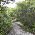The Fishkill Ridge Trail, marked in white, splits off to the north.- Overlook Trail to Lambs Hill