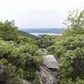 The Fishkill Ridge Trail splits to the south.- Overlook Trail to Lambs Hill