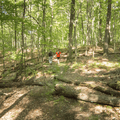 Descending High Knob and the Long Path.- The Long Path: Gonzaga Park to Schunemunk State Park