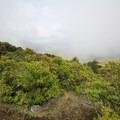 The Ōtepatotu Track continues climbing near the summit of Lavericks Peak.- Ōtepatotu Track to Lavericks Peak