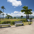 The park at Pearl Harbor Historic Sites.- Pearl Harbor Historic Sites