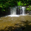 Bozenkill Falls, the 30-foot star attraction here.- Christman Sanctuary