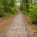 Flat, easy trail to the boardwalk.- Alice Bemis Thompson Wildlife Sanctuary