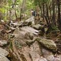 A rocky section of trail. - Mount Chocorua via Liberty Trail