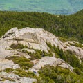 A rocky ridge below the summit. - Mount Chocorua via Liberty Trail