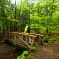 Walking across a bridge on the way to the Tarn.- Jesup Path