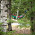 Hammocks are allowed.- Blackwoods Campround