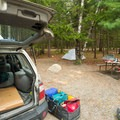 Camp sites are moderately sized.- Blackwoods Campround