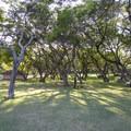 Picnic area at Hanauma Bay Park.- Hanauma Bay