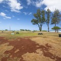 Camping area at Kaiaka Bay Beach Park and campground.- Kaiaka Bay Beach Park + Campground