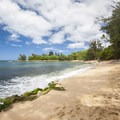 The west-facing beach at Pua'ena Point Beach Park.- Hale'iwa Beach Park + Pua'ena Point Beach Park