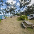Tent camping area at Mālaekahana Beach Campground.- Mālaekahana Beach Campground