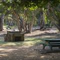 Mālaekahana State Recreation Area Campground.- Mālaekahana State Recreation Area Campground