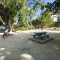 Typical campsite at Mālaekahana State Recreation Area Campground.- Mālaekahana State Recreation Area Campground