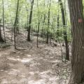 Descending on the Red Trail.- Breakneck Ridge