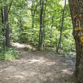 Continue to the left on the Yellow Trail.- Breakneck Ridge