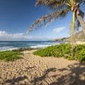 Sandy Beach off of the Kalaniana'ole Highway.- Sandy's Beach