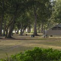 Day use picnic area at Waimanalo Bay Beach Park.- Waimanalo Bay Beach Park Campground