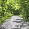 Follow the wide gravel path.- Ninham Mountain Fire Tower