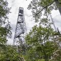The Mount Ninham Fire Tower.- Ninham Mountain Fire Tower