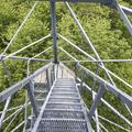 Going down the steps.- Ninham Mountain Fire Tower