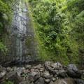 Mānoa Falls during a dry period.- Mānoa Falls Hike